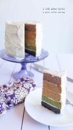 paleo-rainbow-cake-2